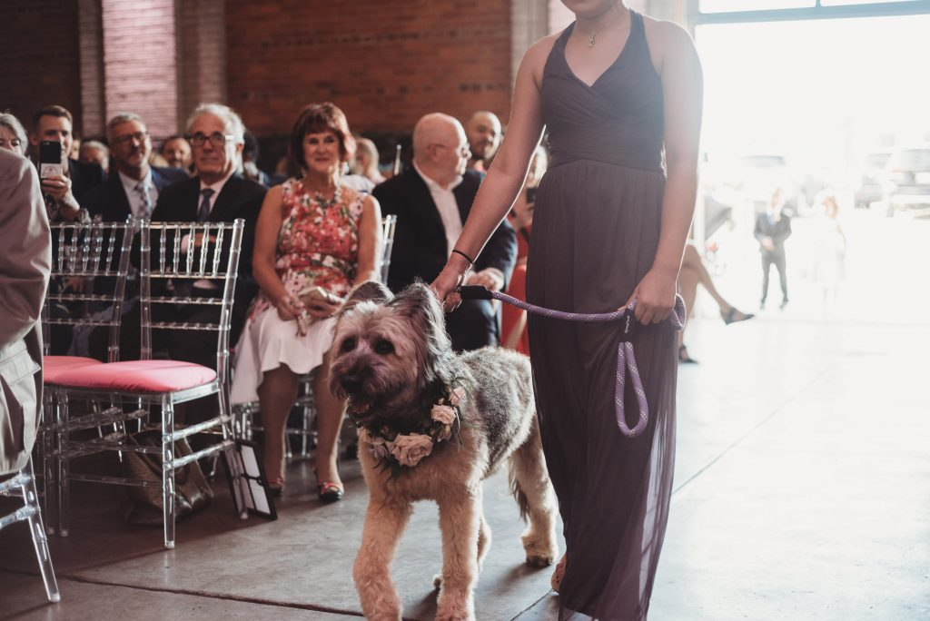 How to Personalize your Wedding by Including your Favorite Furry Friend!